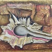 De Jong, Ernst   Fossil shell