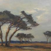 Sold |Spilhaus, Nita | Landscape