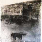 Sold | Retief, Rentia |Verlate Hond