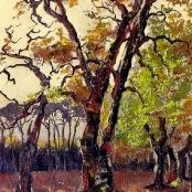 Sold | Spilhaus, Nita | Autumn Trees
