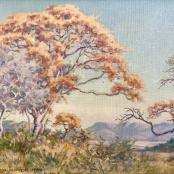 Mayer, Erich | Tree landscape