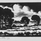 Botha, David | Tree landscape, dated 1977, edition 18 of 100