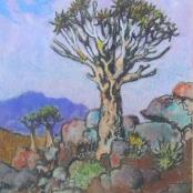 Sold  Theys, Conrad   Quiver tree
