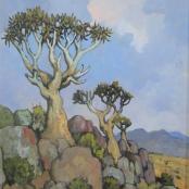 Sold  Theys, Conrad  Kokerboom
