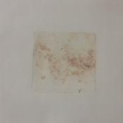 Visser, Jana | Kneading Remains IV