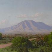 Sold | Volschenk, Jan Ernst Abraham | Veld and mountain, Riversdale
